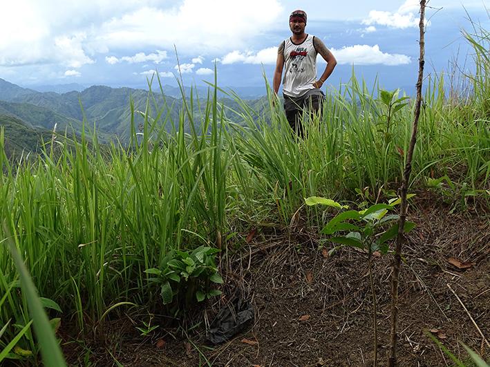 Diplom-Forstwirt Mark beaufsichtigt die Pflanzungen